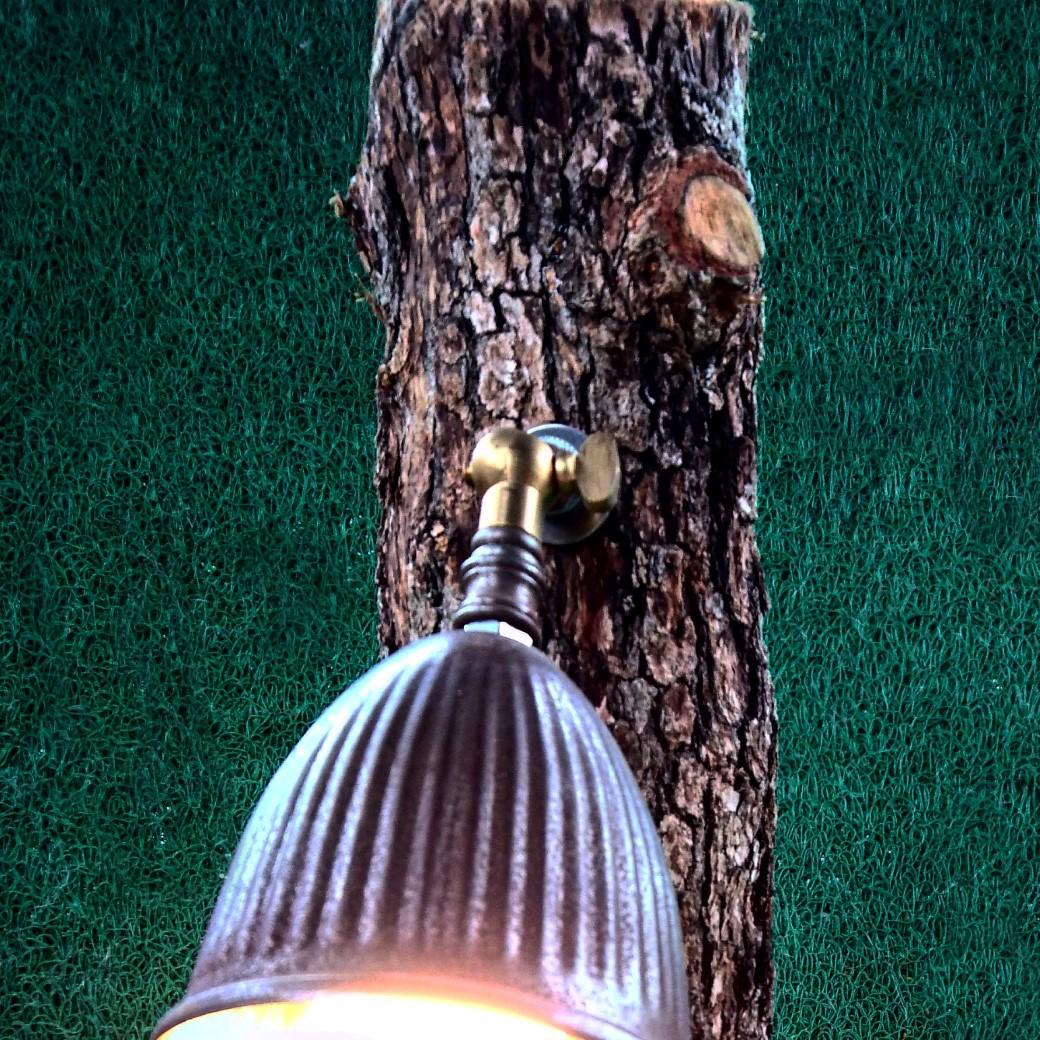 Tree Özel Tasarım Lamba